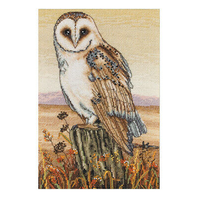 ANCHOR | Counted Cross Stitch Kit: Owl Horizon - Wall Hanging | PCE604