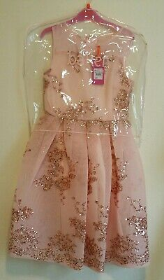 Ted Baker Rose Gold Sequenced Girls Dress Christmas / Bridesmaid  Age 12 Years