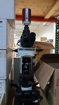 Olympus BX51WI Upright Microscope Fixed Stage Patch Clamping Intravital