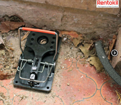 Rentokil Advanced Easy to Use Rat Trap Twin Pack RKLFR51