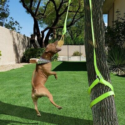 Retractable Interactive Dog Toy, Rope Tug Of War Toys For Medium Or Large Dog