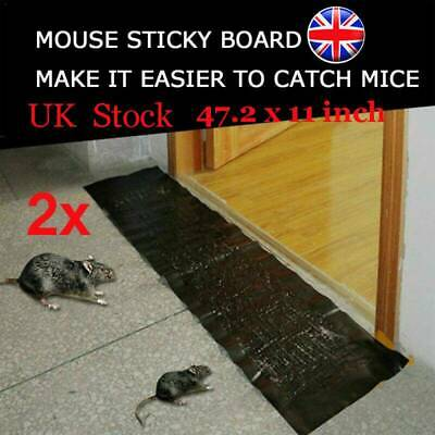 2Pack Large Size 1.2M Mice Mouse Traps Board Super Sticky Rat Snake Bug Safe UK!