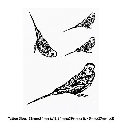 'Budgie' Temporary Tattoos (TO009156)