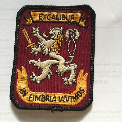 Vintage Excalibur In Fimbria Vivimos Embroidered Patch Rectangle  N4