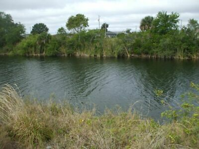 Cape Coral Freshwater lot with owner financing available -  $375 a month