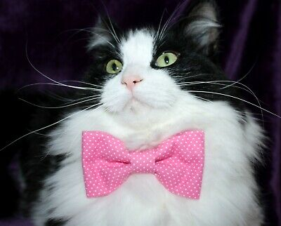 New Cat Pink White Pin Dots Bow Tie & Breakaway Faux Leather Collar For Cat