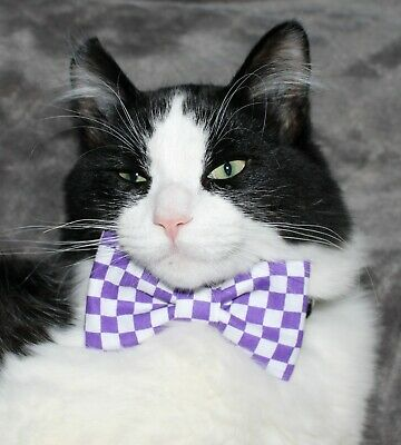 New Cat Purple White Checkered Cotton Bow Tie & Breakaway Faux Leather Collar