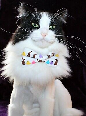 New Cat Bunnies Peeps Cotton Bow Tie & Breakaway Faux Leather Collar Easter