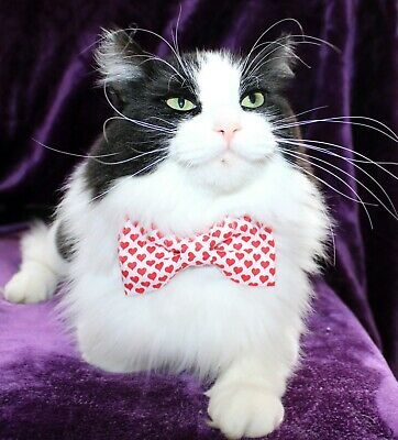 New Cat White Red Hearts Cotton Bow Tie & Breakaway Faux Leather Collar