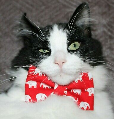 New Cat Red White Elephants Cotton Bow Tie & Breakaway Faux Leather Collar