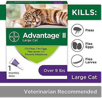 Bayer Advantage II Flea Infestations for Large Cats Over 9 lbs Free Shipping