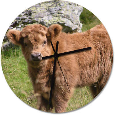 275mm 'Highland Cow Calf' Large Wooden Clock (CK00007050)