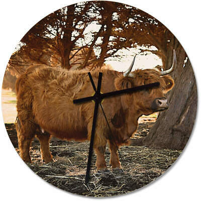 275mm 'Highland Cow' Large Wooden Clock (CK00012014)