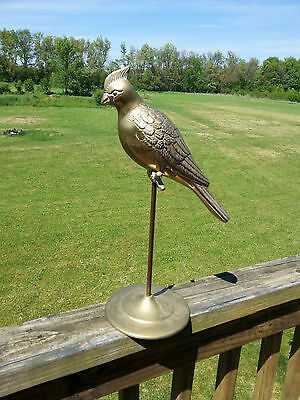 "14"" Tall Leonard Etched Solid Brass Bird Stand Cardinal Blue Jay Vintage Korea"