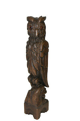 Antique French Black Forest Owl Carving, Walnut, 1920's
