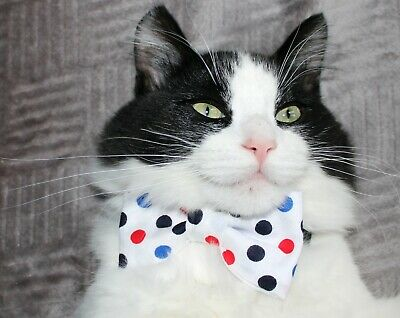 New Cat White Red Blue Polka Dots Cotton Bow Tie & Breakaway Faux Leather Collar