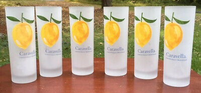 Caravella Limoncello Highball Frosted Glasses Set Of 6
