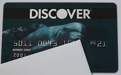 Expired Discover Bank USA Credit Card with Dolphin Rare Limited Edition