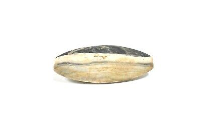 Ancient Western Asiatic Stone Bead