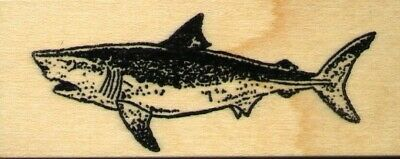 Great White Shark Rubber Stamp  H14406 WM