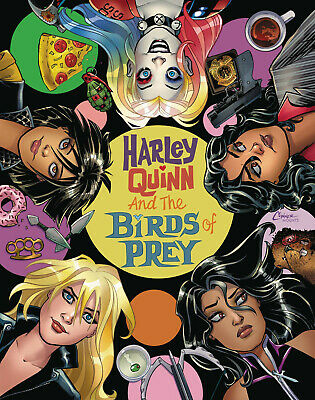 Harley Quinn & The Birds Of Prey #2 Amanda Conner Cover Dc Comics