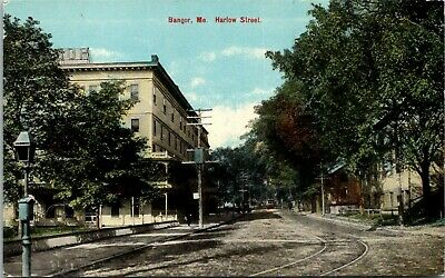 Postcard Bangor Maine c.1907-1915 Harlow Street Windsor Hotel Trolley Trees