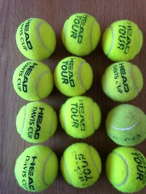 12 used Tennis Balls for dogs or fun. Very good condition one dozen