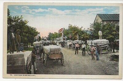 Very Busy Scene With Horse-Drawn Wagons At Cotton Ginning Days. Old Postcard.