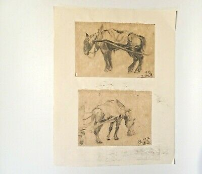 Horses Drawings Pencil On Paper 1926