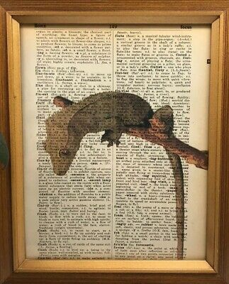 Vintage 1950s Dictionary Reptile Art Print  Collectible Crested Gecko Picture