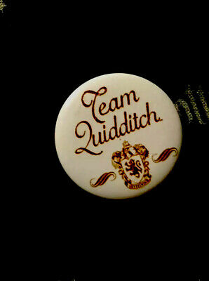 Harry Potter - Team Quidditch pin badge