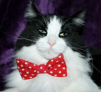 New Cat Red & White Stars Cotton Bow Tie & Breakaway Faux Leather Collar