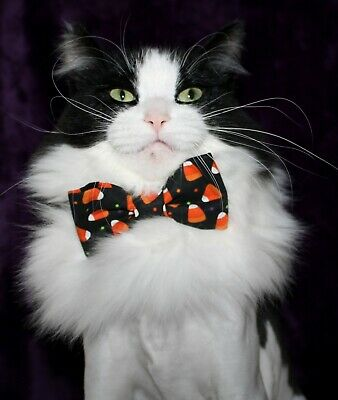 New Cat Small Dog Candy Corn Cotton Bow Tie & Breakaway Faux Leather Collar