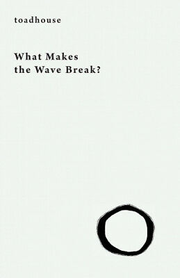 What Makes the Wave Break? by Toadhouse.