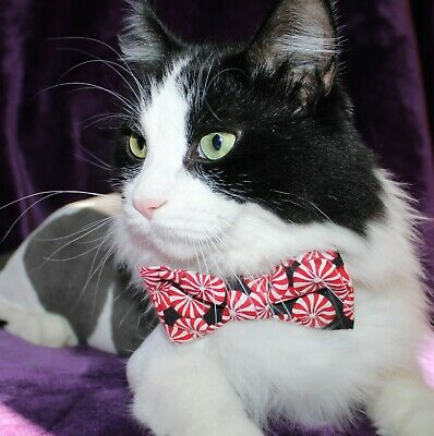 New Cat Black Red Peppermints Cotton Bow Tie & Breakaway Faux Leather Collar