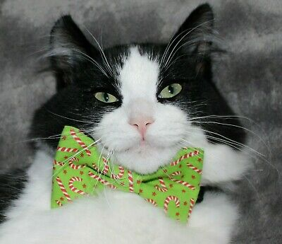 New Cat Lime & Candy Cane Cotton Bow Tie & Breakaway Faux Leather Collar