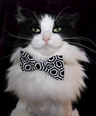 New Cat Black & White Geometric Cotton Bow Tie & Breakaway Faux Leather Collar