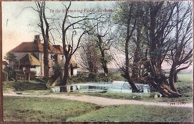 Antique Pc View Of The Wymering Fields Cosham Near Portsmouth Jws 1180 Posted