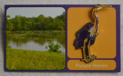 RSPB Pin Badge - Rare Dungeness Purple Heron