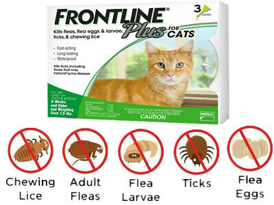 Frontline Plus Flea Lice Tick Remedy for Cats and Kittens ,3 Month Dose