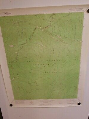 1964 CLINGMANS DOME, NC-TENN Topographical Map Geological Survey US Interior 27""