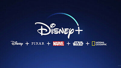 Disney+ Streaming Account - 1 Year Fully Paid and 1 Year Warranty