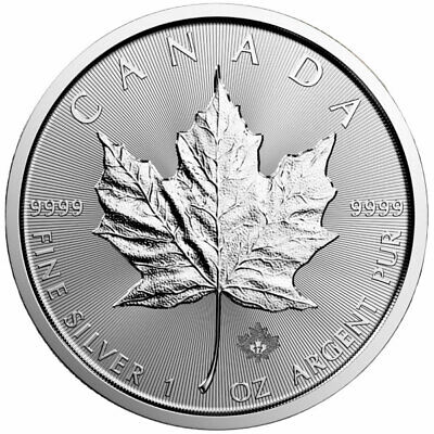 1 oz Silver Maple Leaf Coin - .9999 Pure Ag - Royal Canadian Mint - No Reserve