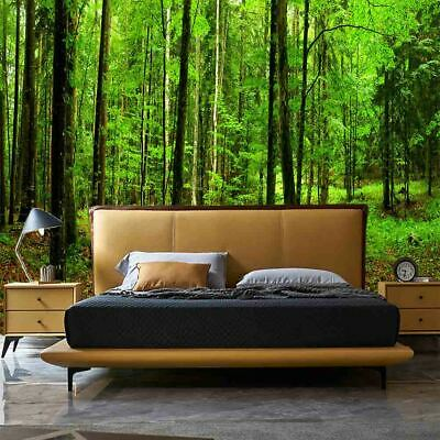 Details about  /3D Sunlight trees 266  Wall Paper Wall Print Decal Wall Indoor AJ Wall Paper