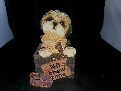 Living Stone 2000 Lhasa Apso Pup In Box Figurine
