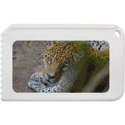 'Jaguar' Plastic Ice Scraper (IC00001126)