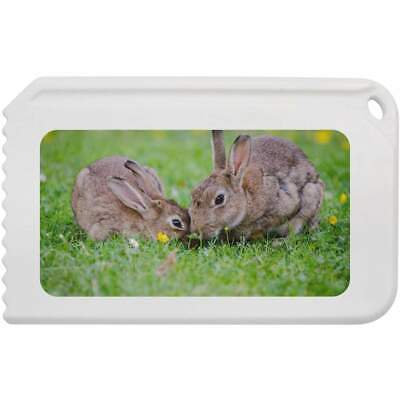 'Kissing Rabbits' Plastic Ice Scraper (IC00001568)
