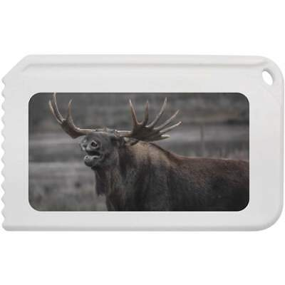 'Moose' Plastic Ice Scraper (IC00001892)