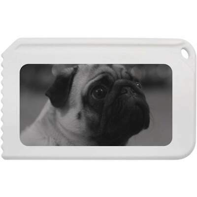 'Pug Head' Plastic Ice Scraper (IC00003845)