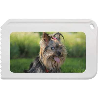 'Yorkshire Terrier' Plastic Ice Scraper (IC00002867)